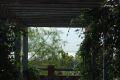 Vedere spre lac, in Ibera