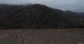 Valle del Elqui, araci pregatiti