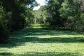 Lac inundat de vegetatie, Parcul Chaco